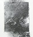 Sonet 16x8