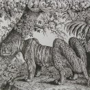 Kalendár-tiger
