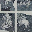 Príbeh koňa