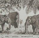 Ex Libris Margecin-Slony