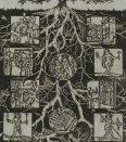 Storočný strom - Chvála múzejníctva
