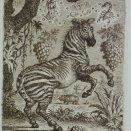 """""""Zverokruh"""" - zebra"""