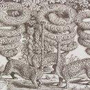Kalendár-leopardi